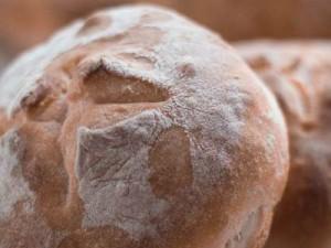 Petits pains rapides